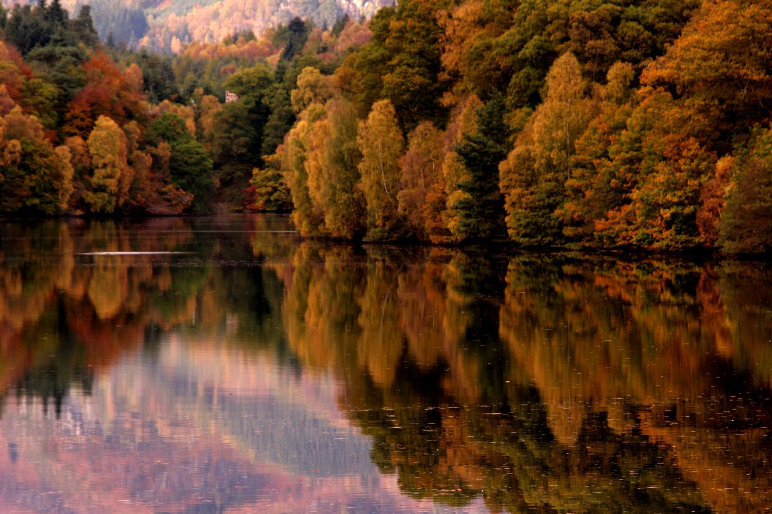autumn-landscape-of-scotland-JPG-1377259