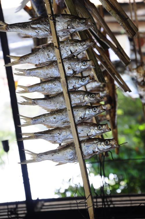 Xiên cá thiểu giá khoảng 40.000 đồng.