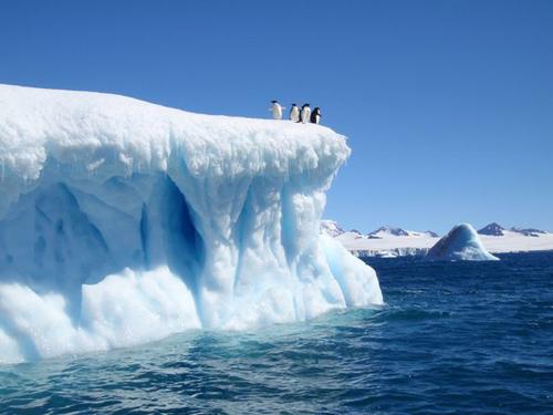 devil-island-iceberg-weddell-sea-adelie-