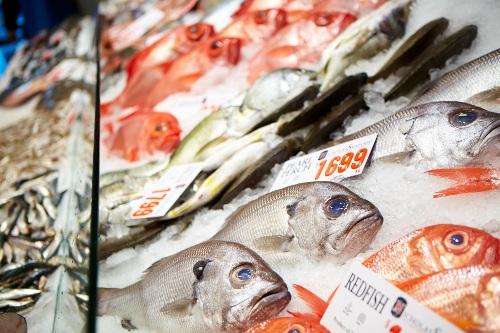 Lạ & Cười - Hải sản tươi sống tại chợ cá nổi tiếng nhất Sydney