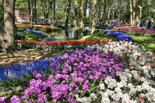 4-Keukenhof-Gardens-5857-1381825600.jpg