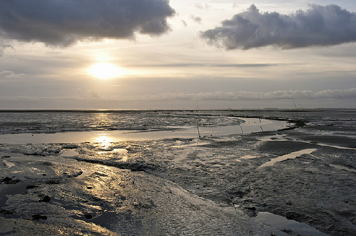 9-Frisian-Islands-7149-1381825600.jpg