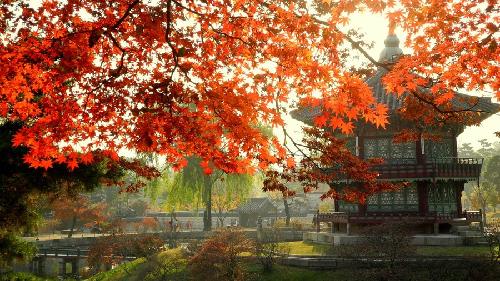 korea-3-JPG_1381801250.jpg