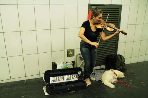 Một nghệ sĩ đường phố chơi violin ở ga tàu điện ngầm.