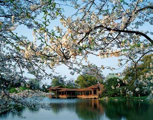 50933700-Hang-Chau.jpg
