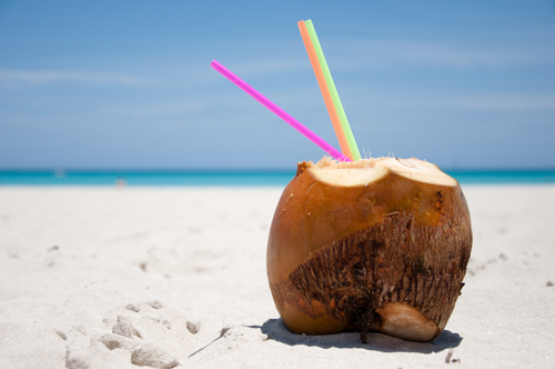 coconut-2249-1387859788.jpg