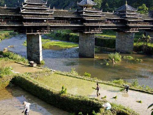 chengyang-bridge-5-5_1388196997.jpg