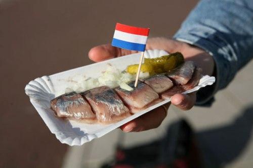 Dutch-haring-4961-1388660628.jpg