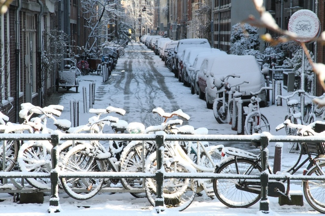 Hoa tuyết tháng 2 ở Amsterdam