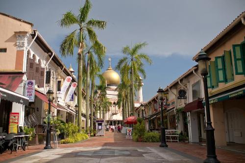 Khu-pho-A-Rap-o-Singapore-6644-139461902