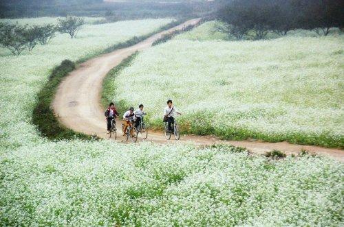 Điểm đến cuối tuần gần Hà Nội cho dân phượt