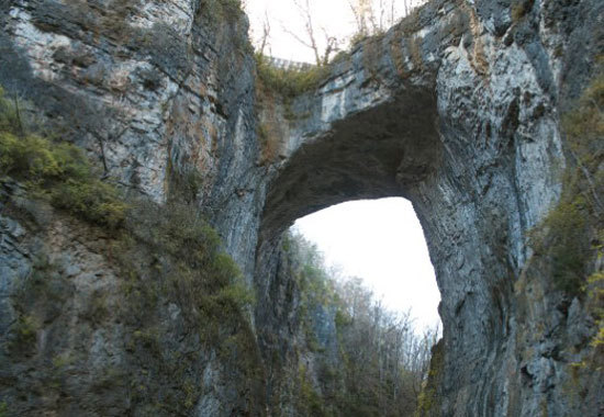 Cây cầu đá tự nhiên, Virginia