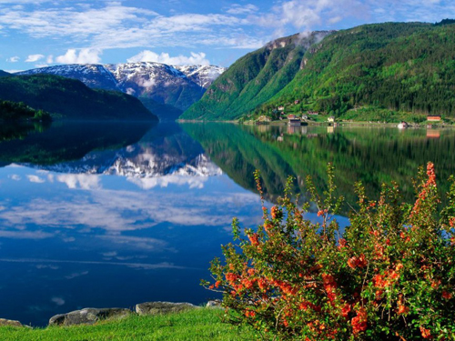 Scandinavia-Wallpaper-i3u8-7870-14029957