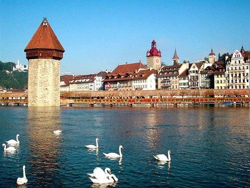 Lucerne-2-2392-1405936278.jpg