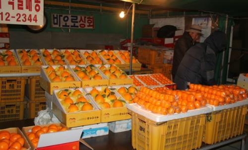 Jeju - o bai bien Yongduam .JPG