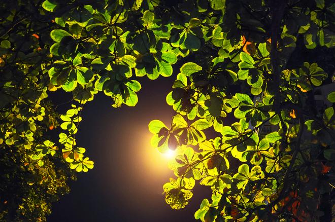 Hà Nội yên bình và tĩnh lặng về đêm