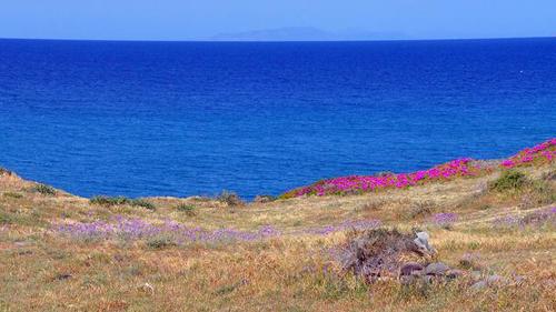 4 4197 1412391729 Những mảng màu quyến rũ ở Santorini