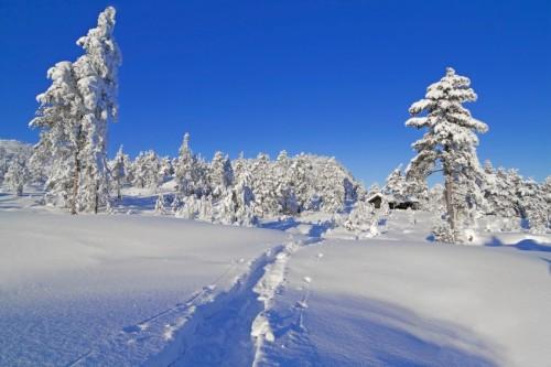 1-frozen-4778-1413349896.jpg