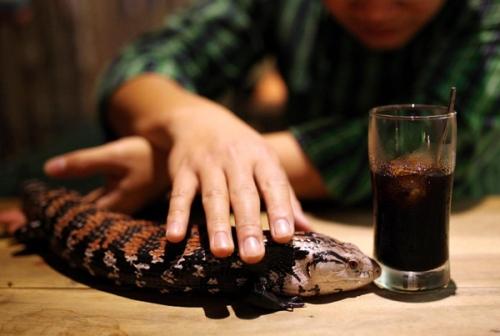 RM 3800 1414211487 Khi cá tính bắt tay cà phê ở Hà Nội