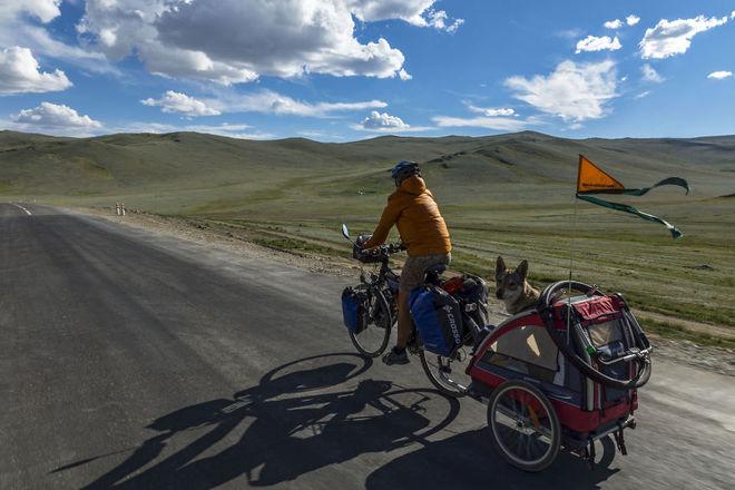 mongolia olgij rower przyczepka 880 1414557955 660x0 Chú chó lai sói chinh phục Mông Cổ
