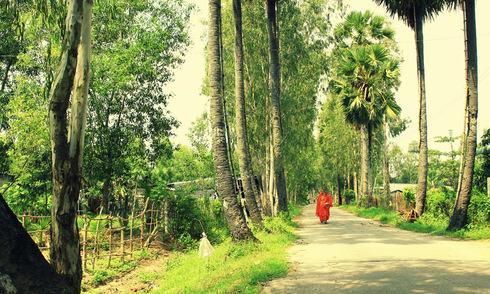 Vẻ bình yên miền sông nước An Giang