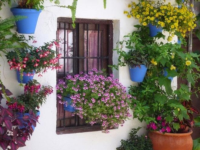 patios de cordoba 132 1415172581 660x0 Rực rỡ lễ hội hoa bên hiên nhà ở Tây Ban Nha