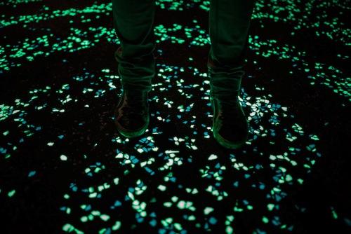 Con đường 'đêm đầy sao' phát sáng tuyệt đẹp ở Hà Lan