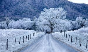 Vẻ đẹp băng giá của nước Mỹ khi vào đông