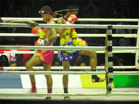 Muay-Thai-Kids-9619-1417717891.jpg