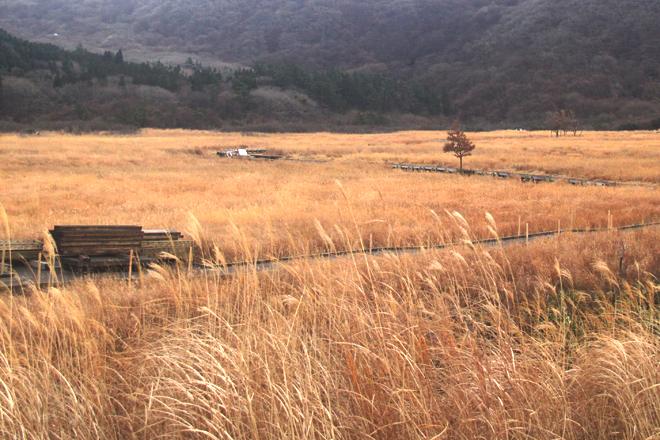 Sắc thu quyến rũ ở miền nam Nhật Bản