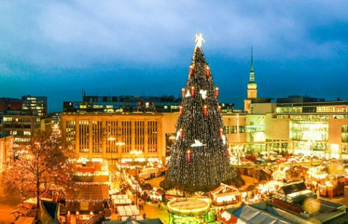 Giant-Christmas-tree-in-Germany.jpg