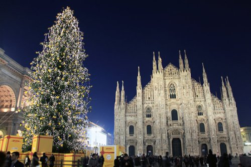 Milan-Christmas-tree.jpg