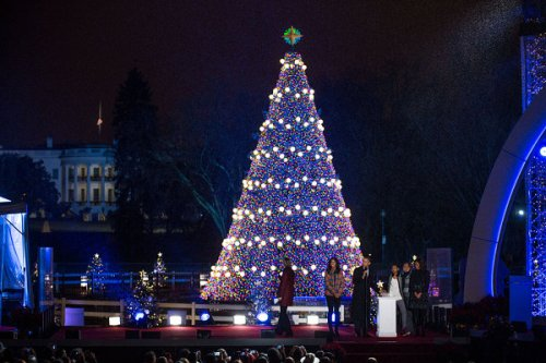 National-Christmas-tree-in-Washington-D-