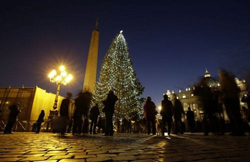 Vatican-City-Christmas-tree.jpg