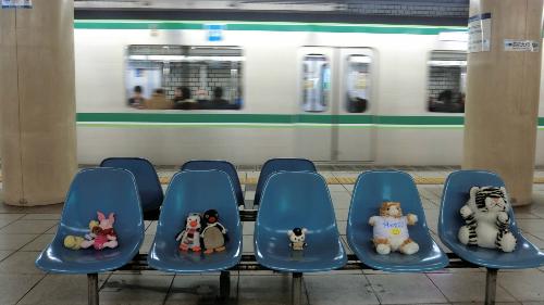 Mèo Meggy cùng những người bạn chung tour đang ngồi tại ga tàu điện ngầm ở Tokyo. Ảnh: Pri