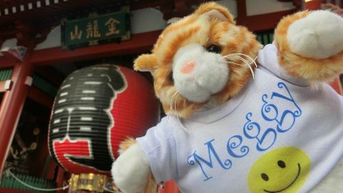 Mèo Meggy được chụp hình bên ngoài một nhà hàng ở Tokyo. Chủ của Meggy cho biết mèo của anh ăn chaynên chắc chắn không đụng đến miếng sushi nào. Ảnh: Pri