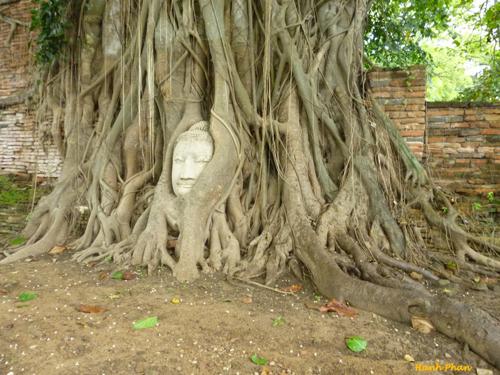 Chua-Wat-Mahathat-co-mot-dau-t-6197-6290