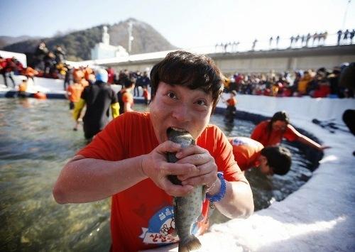 sancheoneo-ice-festival-4-2-2797-1421472