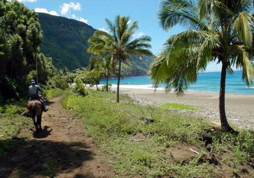 H2-Hawaii-2015_1422235865_1422235874.jpg
