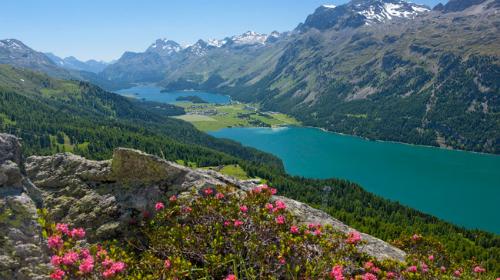St-Moritz-4626-1422329680.jpg