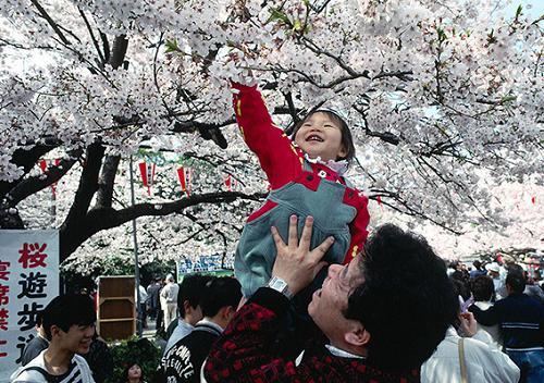 japan 2 2190 1422860452 Khám phá những thiên đường mua sắm cuối năm tại Châu Á