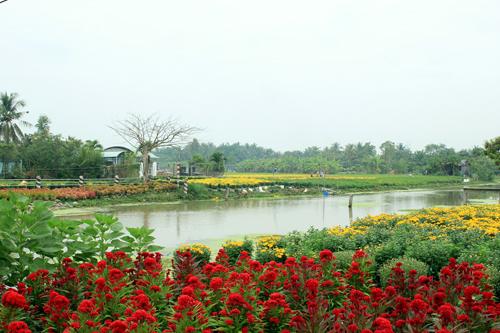 Hinh-06-Lang-hoa-My-Phong-JPG-9610-14236
