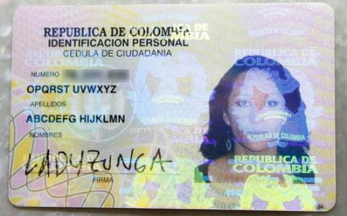Ladyzunga-Cyborg-550x343-1935-1424961442