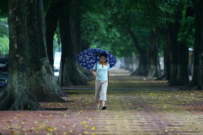 phophandinhphung 9 1427082750 660x0 Khám phá những thiên đường mua sắm cuối năm tại Châu Á