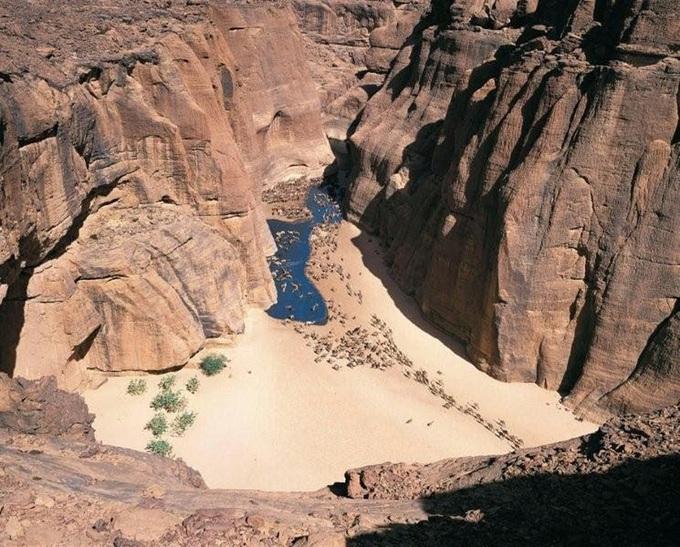 Những điều kỳ diệu giữa sa mạc