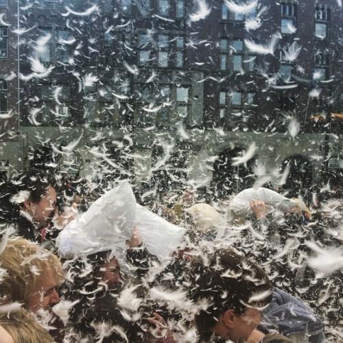 Người dân Hà Lan còn tổ chức lễ hội ném gối sôi động ở quảng trường Dam, Amsterdam, cùng thời gian với thành phố Utrecht. Ảnh: Instagram.