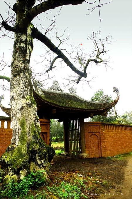 Hưng Yên - Làng Nôm là ngôi làng cổ tiêu biểu của mảnh đất Hưng Yên với những nếp nhà xưa cũ, cây đa, giếng nước, sân đình, con đường lát gạch đỏ...