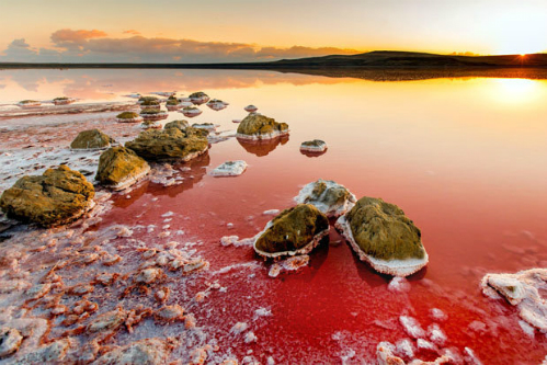 Koyashskoye-Salt-Lake-red-4470-6632-2993