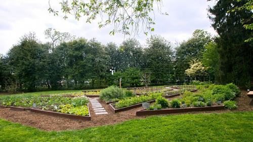6. Vườn rau này đã được bà Obama đưa vào khuôn viên Nhà Trắng từ 6 năm trước để trồng thảo mộc, cây ăn quả và rau. Không chỉ cung cấp rau củ cho nhà bếp, vườn cây này cũng được dùng với mục đích từ thiện cho tổ chức xây dựng lối sống lành mạnh Lets Move của Đệ nhất phu nhân