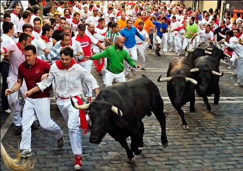 bulls06-2624-1436257139.jpg
